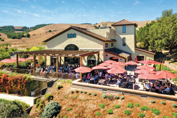 The estate is set in the low-lying hills of Carneros