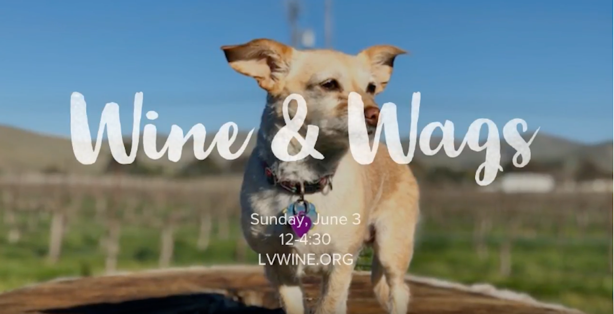 Wine & Wags in Livermore Valley Wine Country